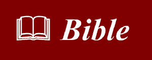 Free Bible Order Form @ Bibles4Free com - A Gift from the US Bible
